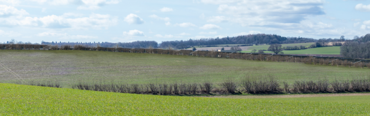 Application Submitted for Cayton Solar Farm