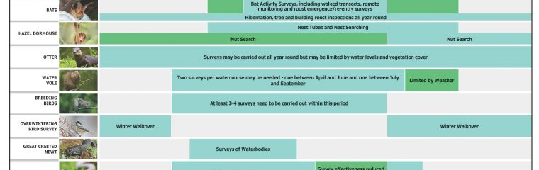 Ecology Survey/Mitigation Calendars