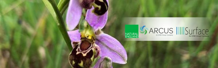 Natural England Releases Three New Tools to Help Developers